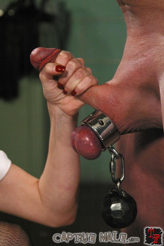 bondage gay toy