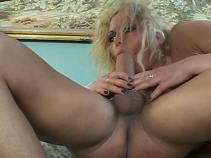 Juggernaut Tits 43